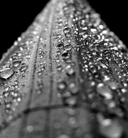 Bautrocknung Duregger Bau Trocknung Neubautrocknung Wasserschaden Feuchteschäden Trocknen Wasserschäden Magazin Mieten Ventilatoren Trockner München Wasser (2)