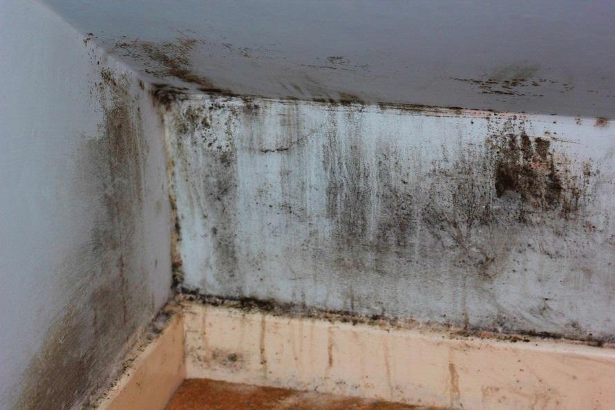 Versicherung Wasserschaden Hausratversicherung Wohngebäudeversicherung Schadenursache Schaden Bautrockner Bautrocknung Duregger mieten München Schimmelbefall